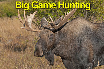Big Game Hunting Charter Flights To Adventure
