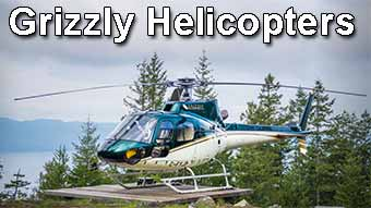 Grizzly Helicopters