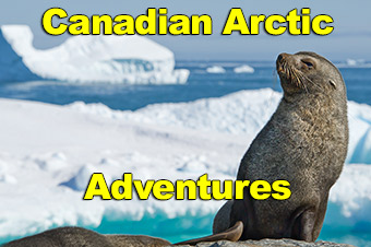 Canadian Arctic Adventures