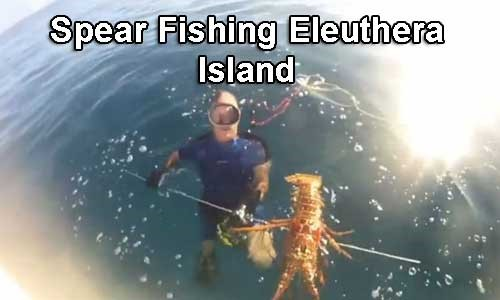 Spear-Fishing-Eleuthera-Island